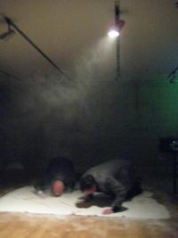 "performance ""Vitt brus"" by Thörn/Kirstein @ Nordic Embassies Berlin 2011"