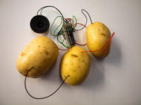 connected potatoes