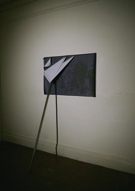 "Ciarán Walsh: ""Urwald"". Image courtesy the artist - www.ciaranwalsh.com"